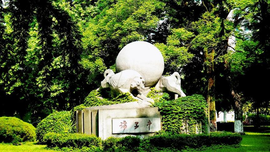 2020年中国科大波士顿校友会科技峰会——职业发展分论坛